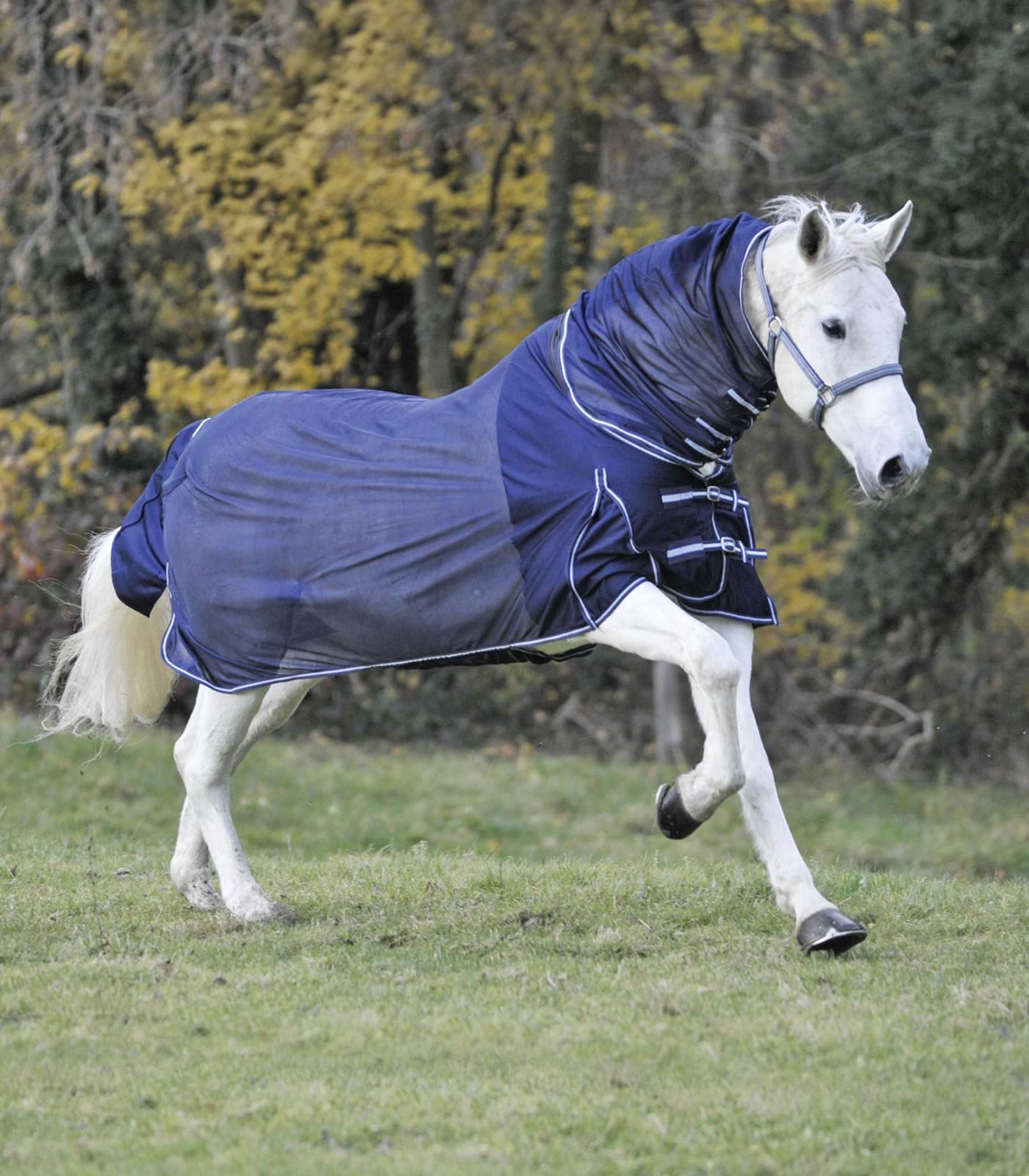 Deka pro koně proti hmyzu